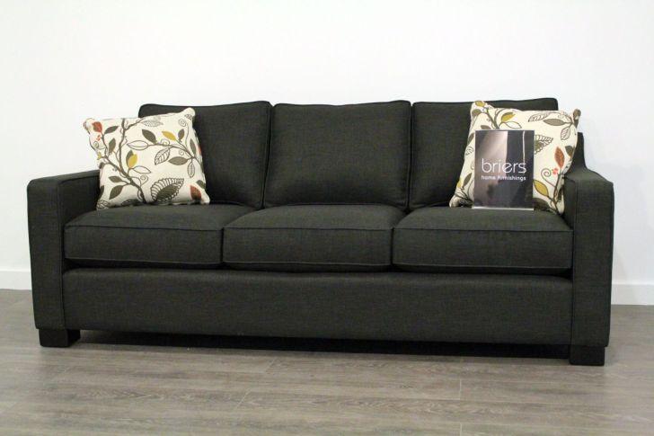 Apartment Size Sofa Burrard