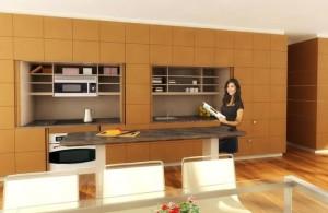 Clever Stealth Kitchen