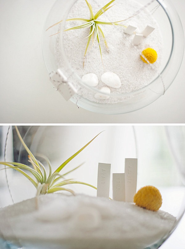 Modest Air Plant Terrarium Gift Idea