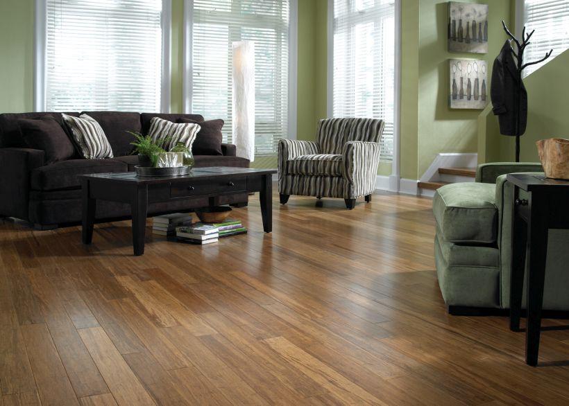 Antique Hazel Morning Star Bamboo Flooring for Living Room