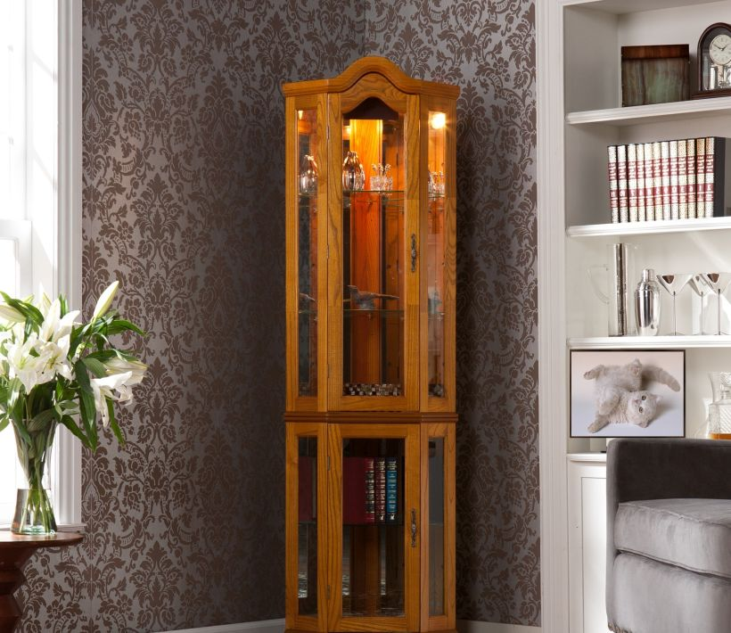 Curio Cabinet By Holly Martin Riley with Lighted Corner Glass Wall and Glass Doors For Living Room Corner Curio Cabinet Ikea