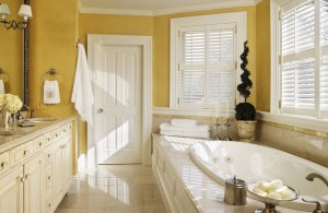 yellow bathroom with custom sets furniture and modest brushed nickel items such as towel ring while mixes the faucet and the knobs changing the old steel with the unbeatable brushed nickel bathroom accessories